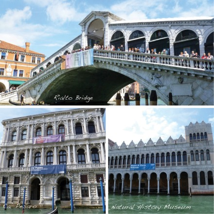 Sights along the Grand Canal: Rialto Bridge, Ca' Pesaro, and the Natural History Museum