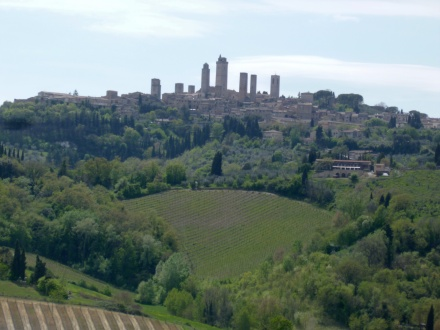 View from the winery with San Gimignano in the background.